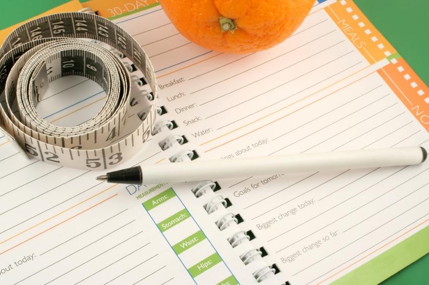 weight watchers food journal