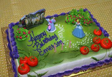 Emerson's Birthday