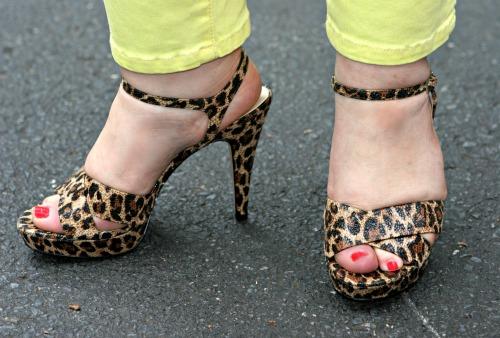 franco sarto leopard sandal heels