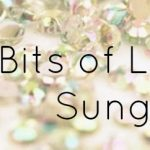Little Bits of Luxury: Sunglasses