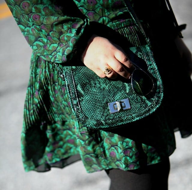 wardrobe oxygen what I wore green snakeskin bag talbots