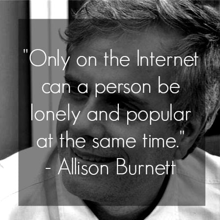 blogging quote allison burnett only on the internet can a person be lonely and popular at the same time