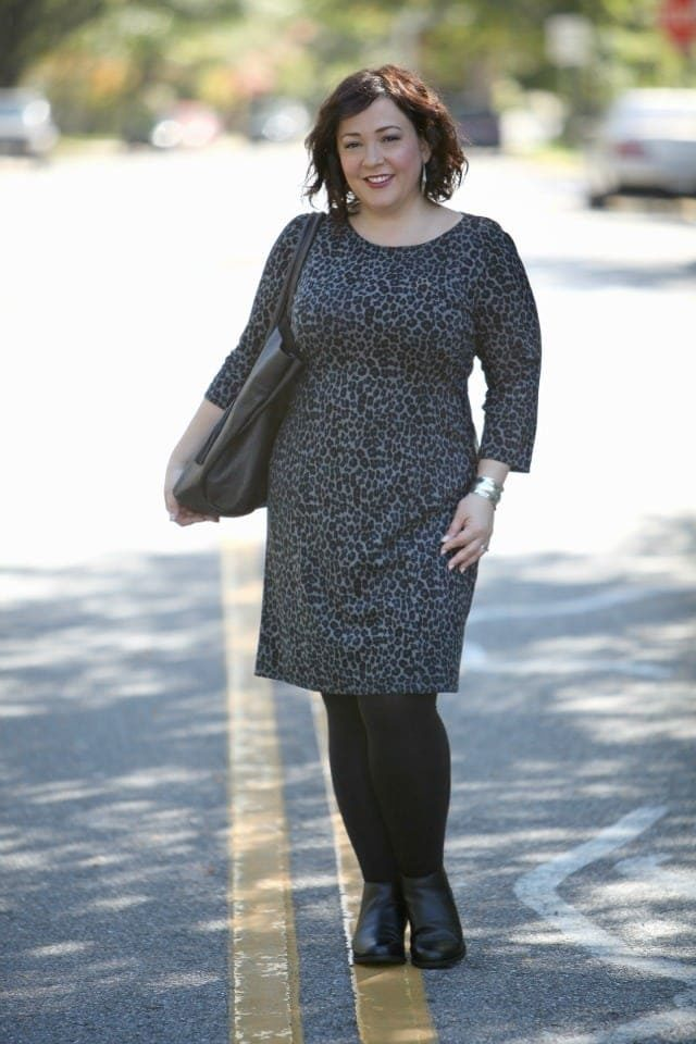 Wardrobe Oxygen featuring a Talbots leopard ponte dress