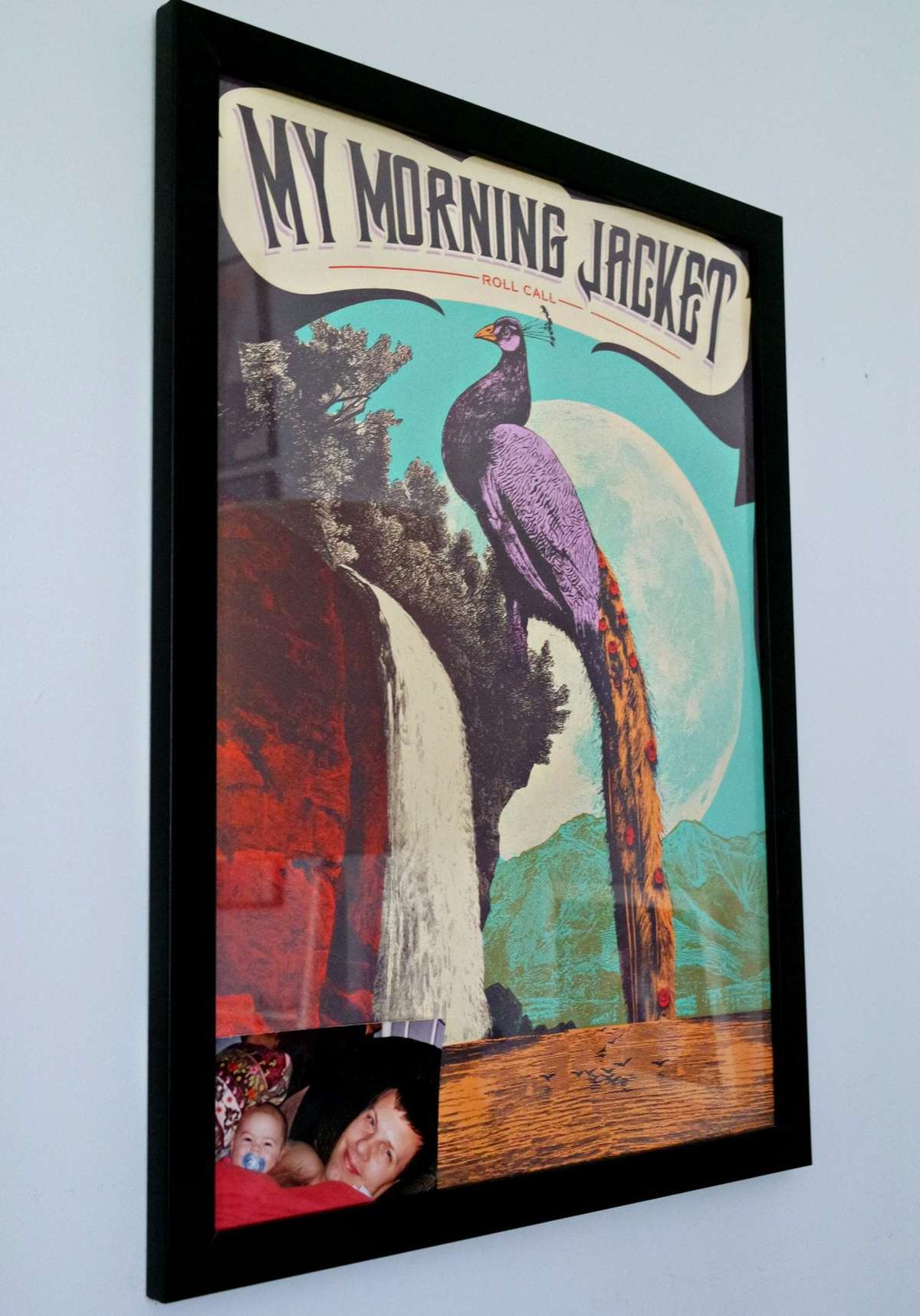 My Morning Jacket Poster Peacock