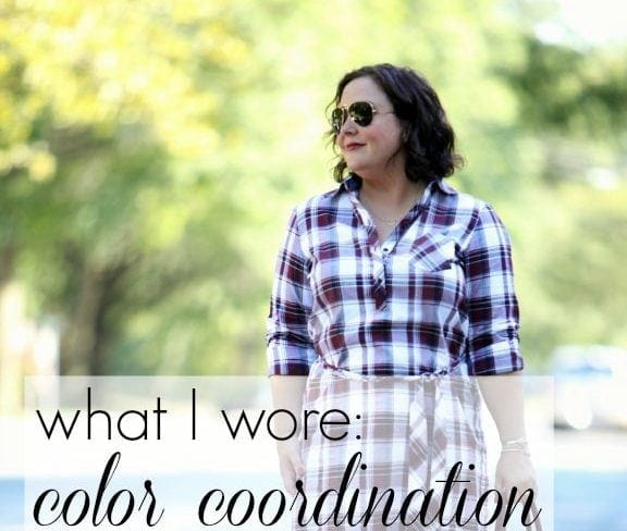 Wardrobe Oxygen What I Wore Color Coordination featuring a Foxcroft Plaid Shirt Dress