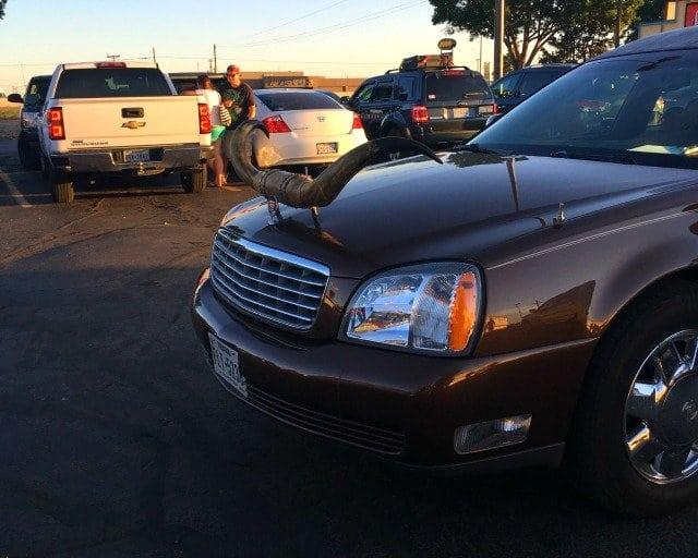 the big texan longhorn limo