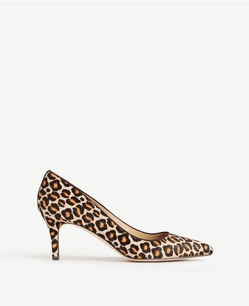 Ann Taylor Eryn leopard haircalf pumps