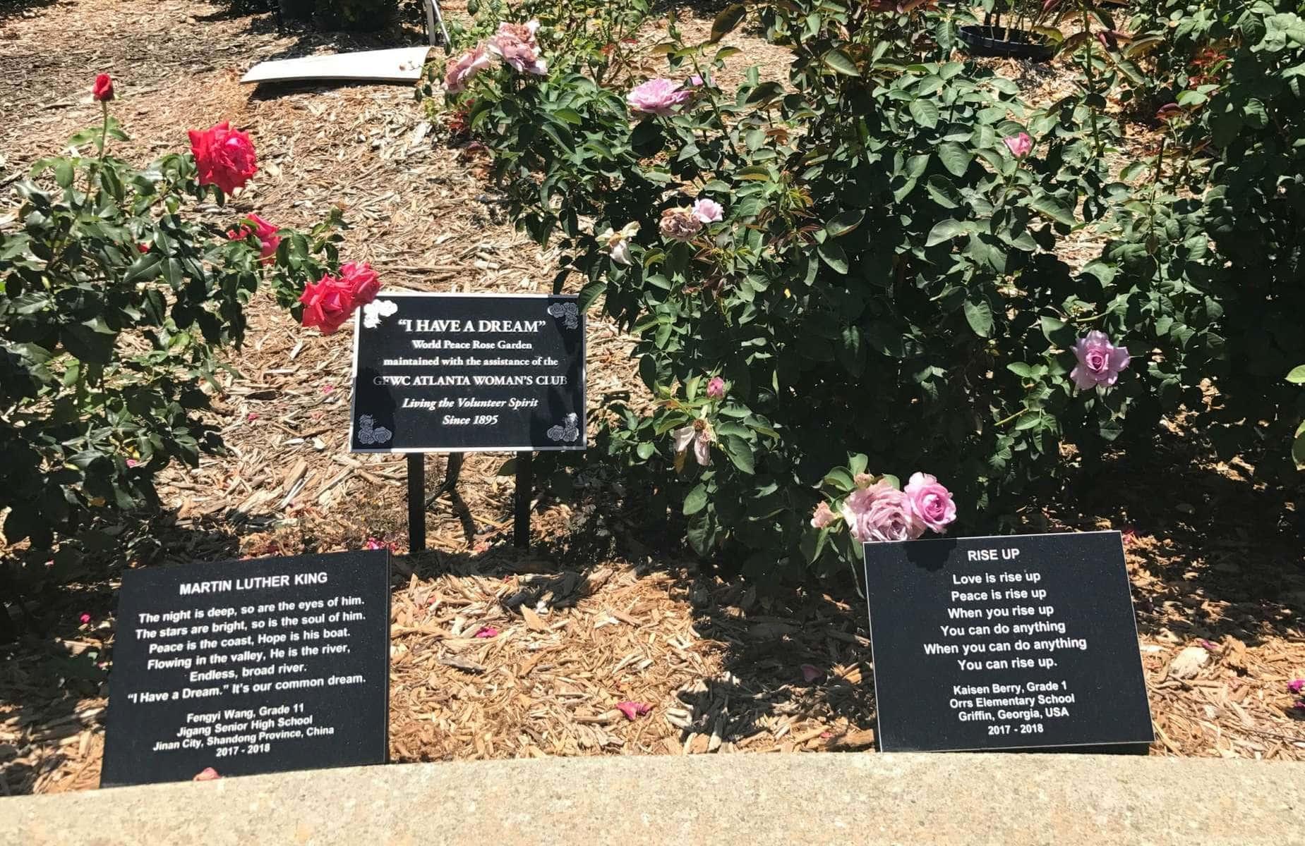 martin luther king jr rose garden