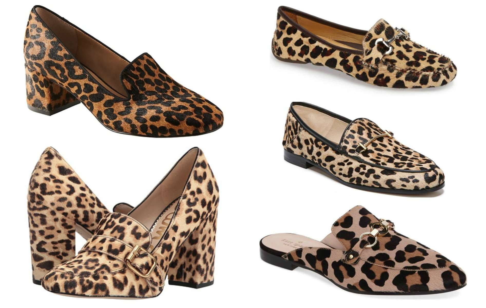 the best leopard print shoes for fall featured by popular DC petite fashion blogger, Wardrobe Oxygen: loafers
