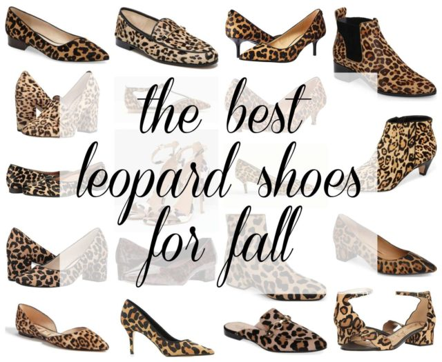 the best leopard print shoes for fall featured by popular DC petite fashion blogger, Wardrobe Oxygen