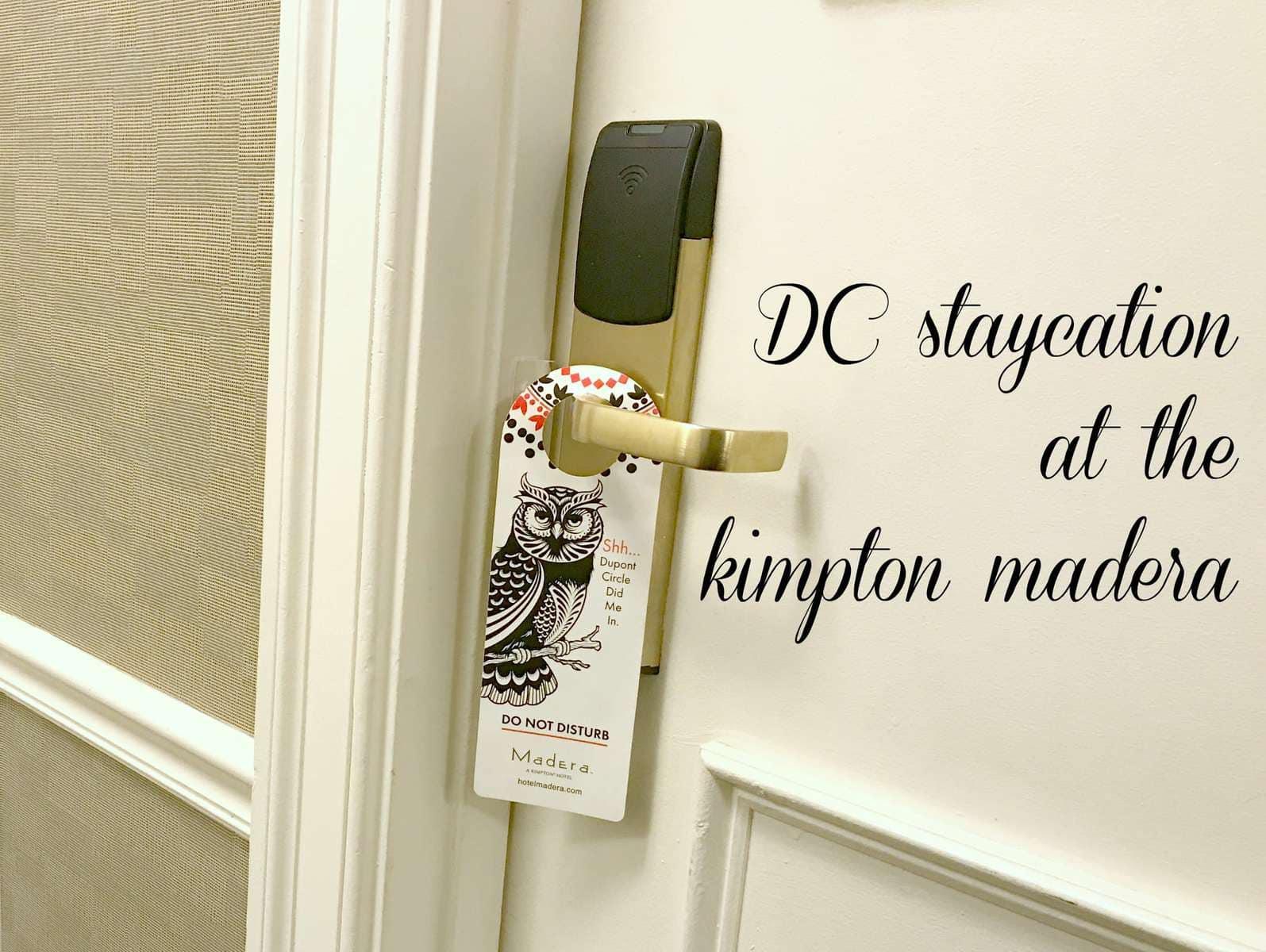 dc staycation kidc staycation kimpton maderampton madera