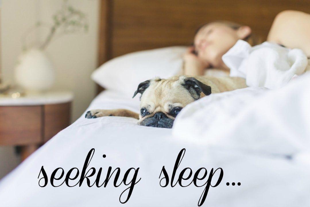 seeking sleep tips for better and longer sleep