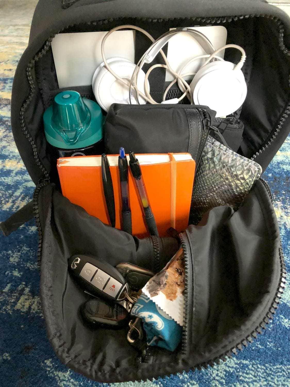 dagne dover dakota backpack full