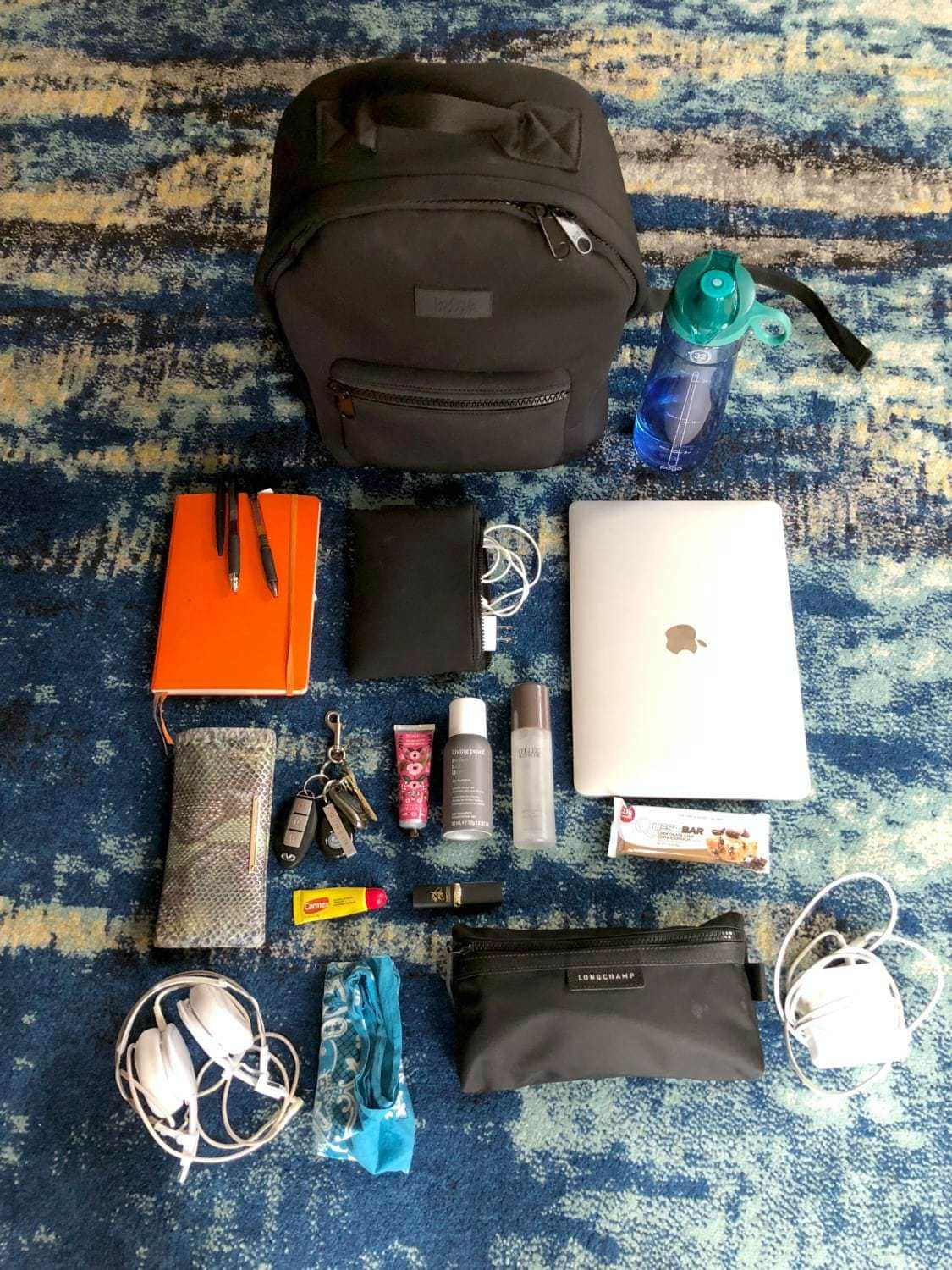 dagne dover dakota backpack review what can it hold
