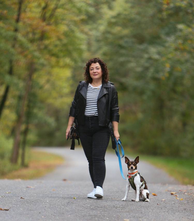 Universal Standard Leeron Leather Moto Jacket review: Alison in a black leather moto jacket, black and cream striped tee, gray jeans and white sneakers walking a small brown and white dog