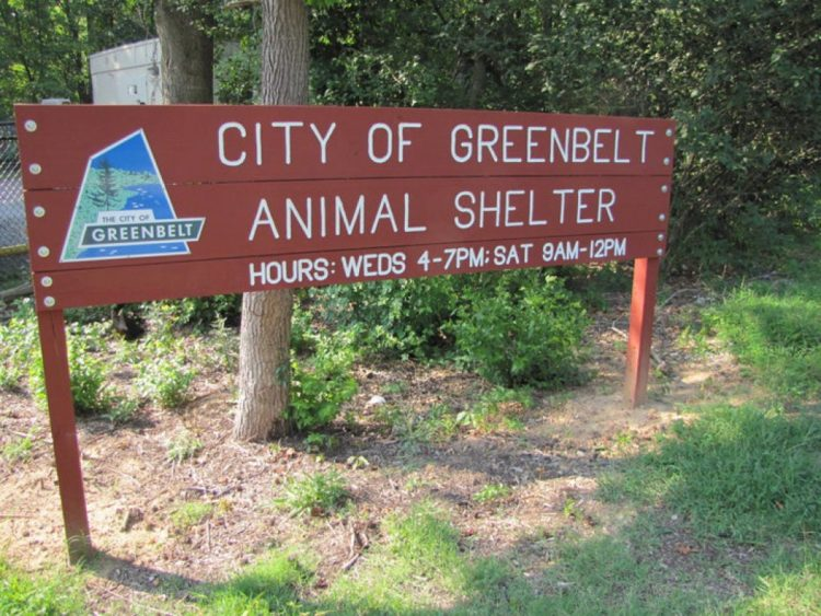 greenbelt animal shelter