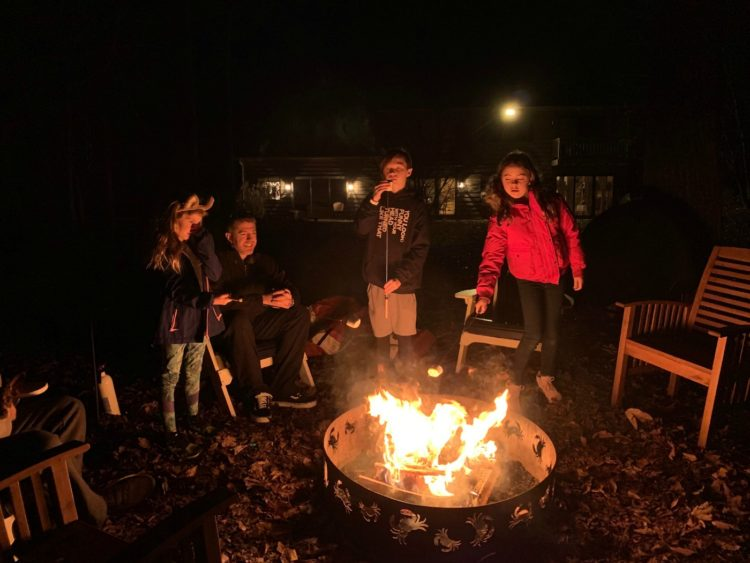 lake anna airbnb fire pit
