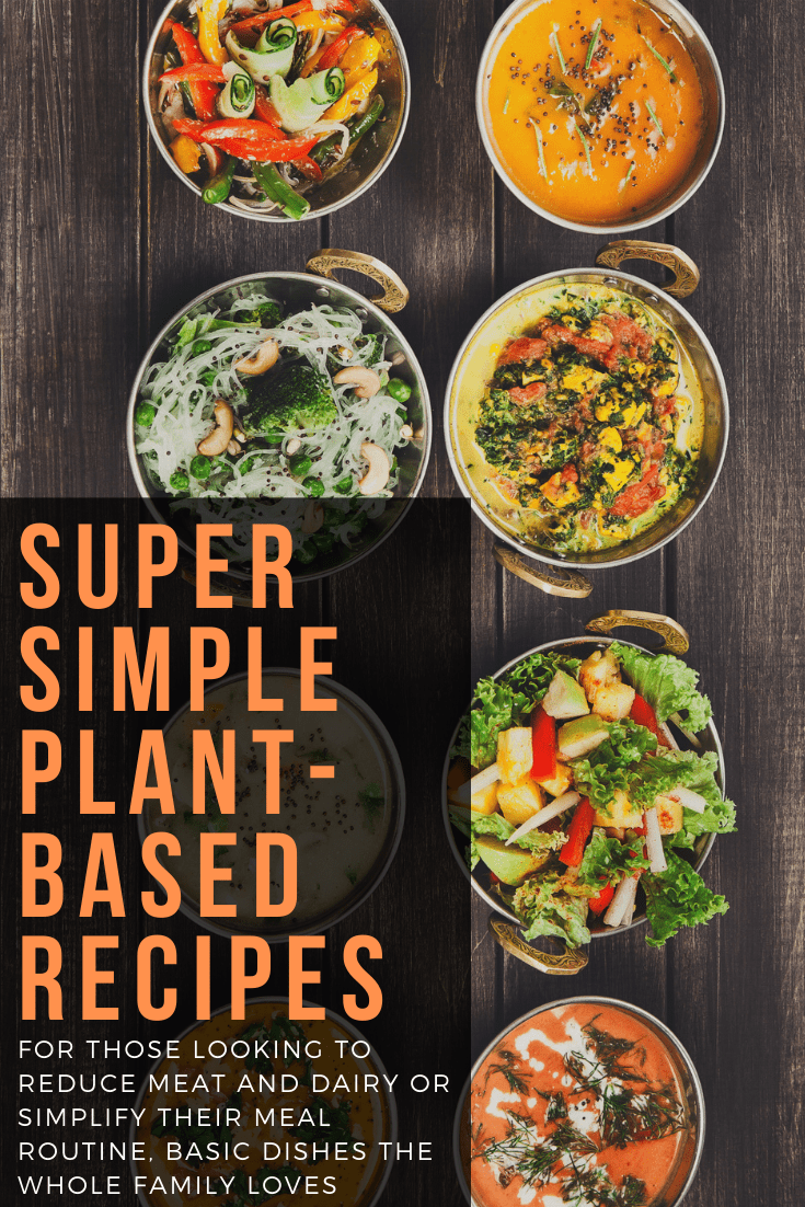 super simple plant based recipes