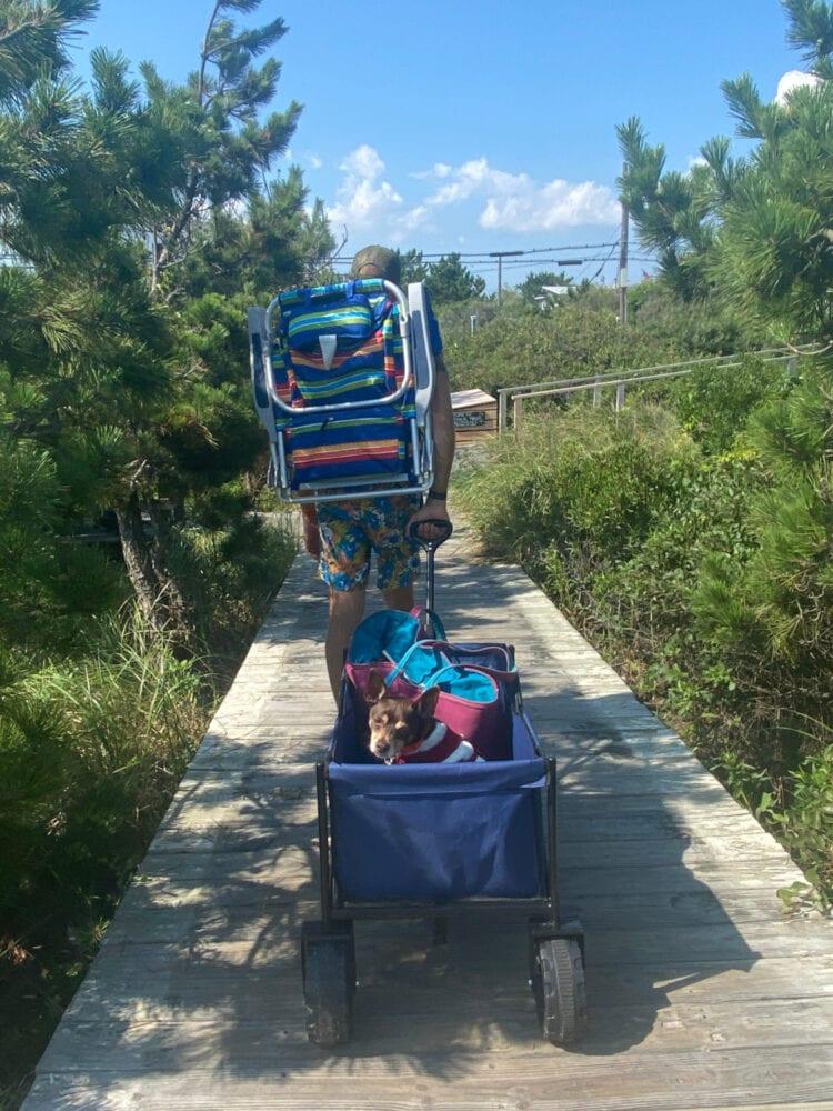 the best beach wagon